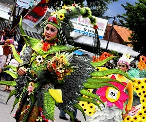 Image from http://mediacenter.malangkota.go.id/2012/06/digelar-malam-hari-mfc-3-makin-glamor/