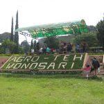 Rekreasi Kebun Teh Wonosari