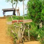 Berwisata Di Malang Dalam Nuansa Omah Kayu