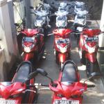 Rental Motor Matic Murah di Malang